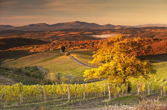 2010 Tuscany