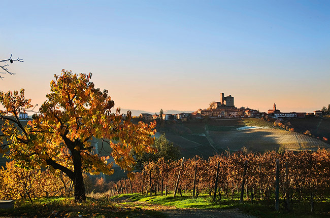 best barolo producers