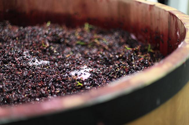 california winemaking
