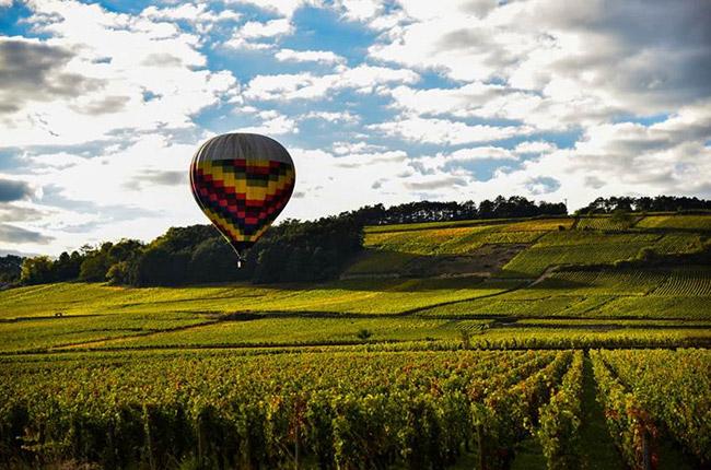 burgundy hot air balloon