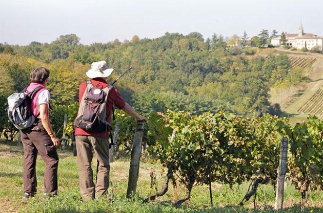 Côtes de Bordeaux promotion