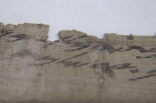 jerusalem wine scroll, iaa