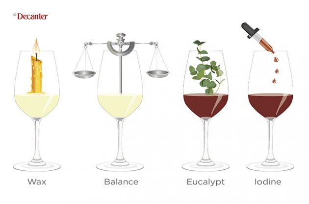 tasting notes decoded