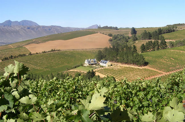 Highberry Wine Farm in South Africa