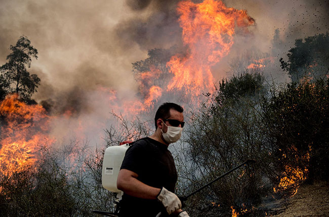 chile fires, vineyards damaged