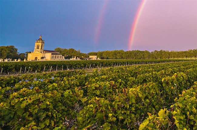 margaux vineyards, bordeaux