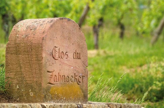 Ribeauvillé, alsace wine