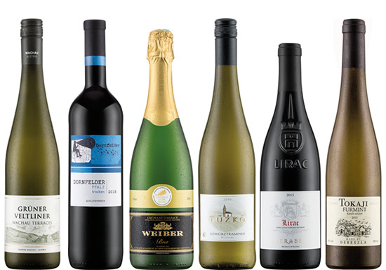 best lidl wines to try the view from decanter experts. Black Bedroom Furniture Sets. Home Design Ideas