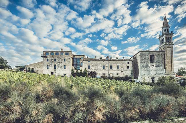 Hidden paradises for wine lovers: Masciarelli Tenute Agricole ...
