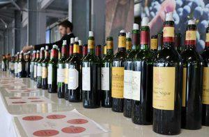 St-Estèphe 2016 wines