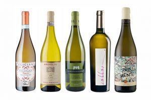 wines under £20 Italian whites
