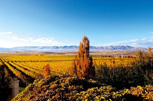 WAshington state wineries, Hedges Estate