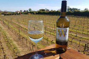 English wine, decanter awards, winbirri