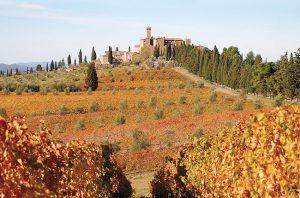 Montalcino wine tour, Castello Banfi