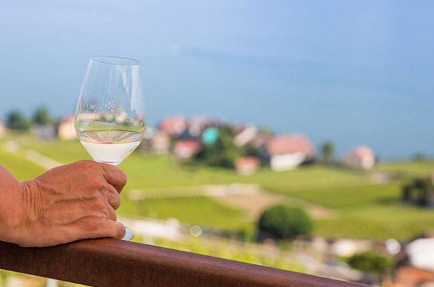 Lake Geneva wines