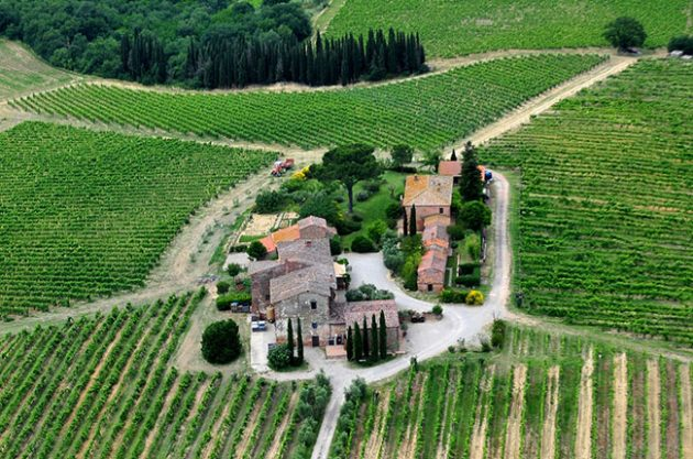 Montepulciano wine tour: Wineries and restaurants