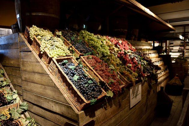 tuscan coast wine