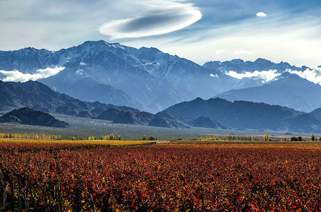 Uco Valley wines, Argentina Geographical Indications