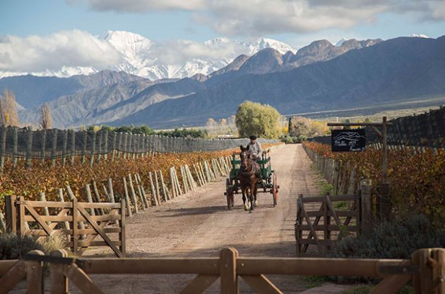 Cheval des Andes, Wines of Argentina