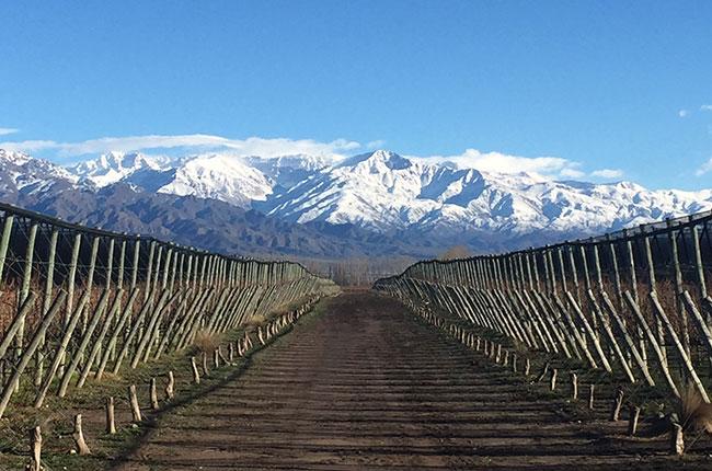 Terrazas De Los Andes Always Above Decanter