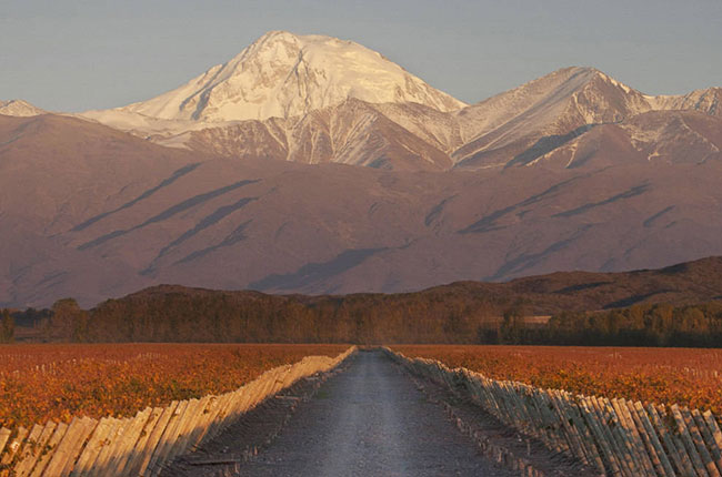 Producer Profile Terrazas De Los Andes Decanter