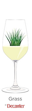 grass aromas in wine