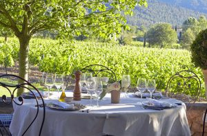 Wine harvest holiday, La Bastide de Marie