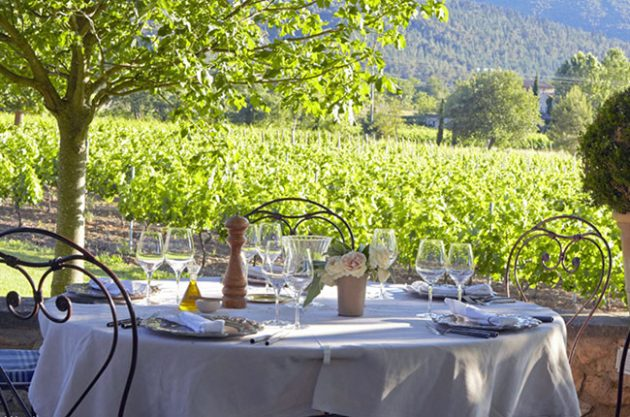 Wine harvest holiday, La Bastide de Marie