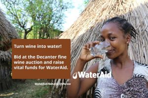 decanter wateraid auction