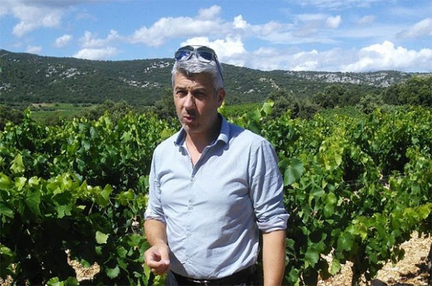castelbarry co-operative, languedoc