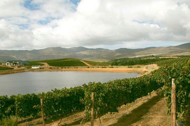 Hemel-en-aarde wineries, Creation