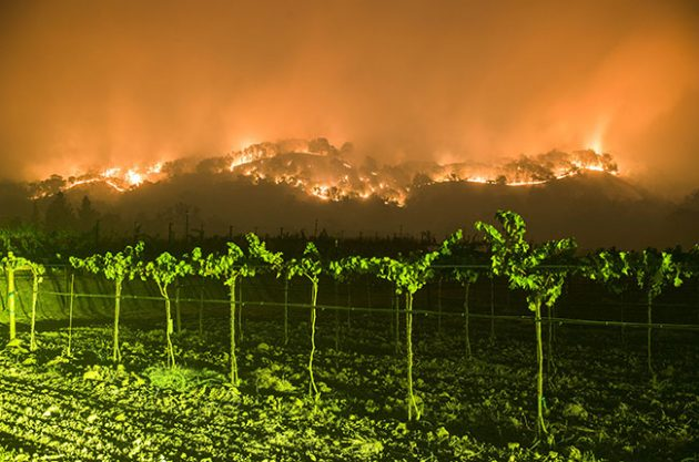 Wildfires in California wine country: Now for the rebuilding