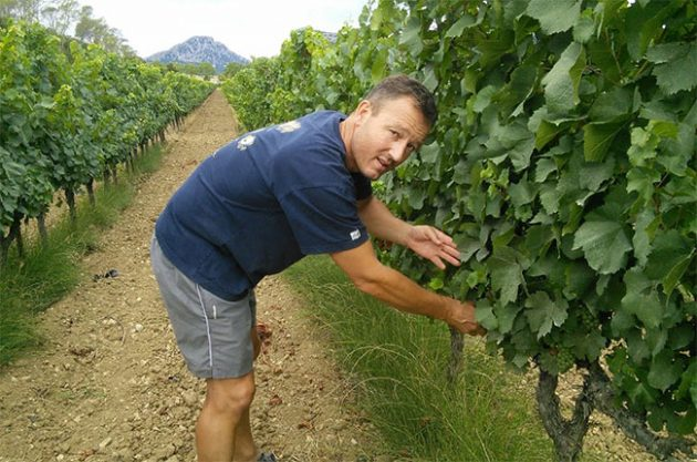 Guilhem Viau in Bergerie du Capucin vineyards.