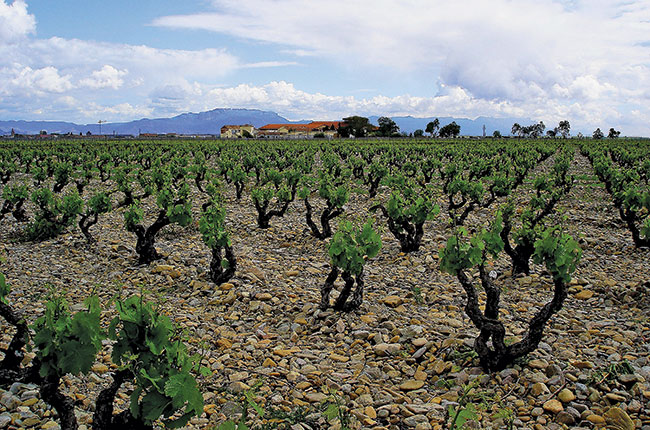 Finca La Emperatriz, Rioja Viñedos Singulares