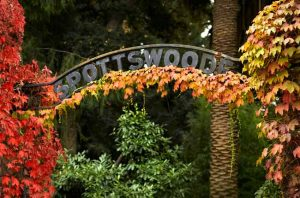 Spottswoode Estate Entrance
