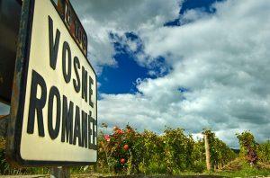 Burgundy 2016 wines