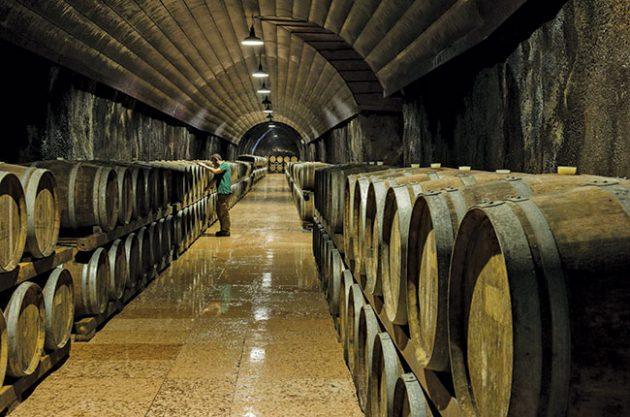 Great value Italian wines made by cooperatives - Decanter