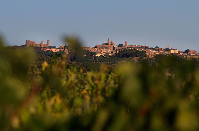 Manachiara vineyards, Montalcino wines