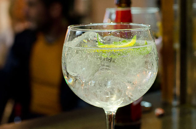 taste gin