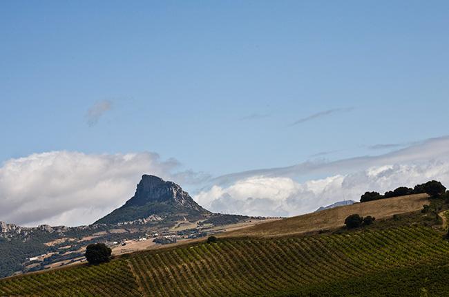 Rioja profile