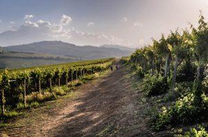 Discover Abruzzo .