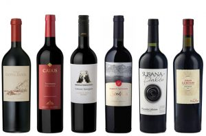Argentinian Cabernets Experts Choice
