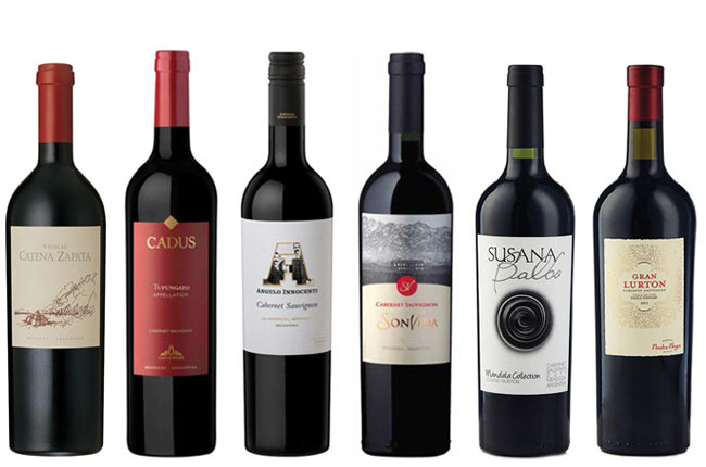 best Argentinian Cabernet Experts Choice