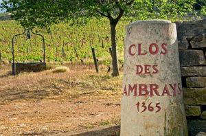 billionaire wine, clos des lambrays