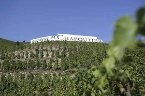 Chapoutier single-vineyard wines