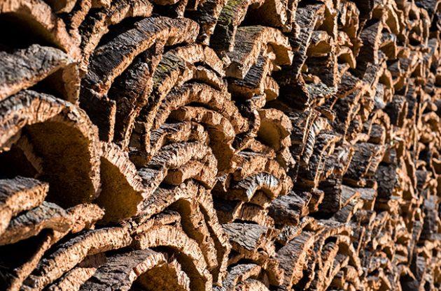 cork environment