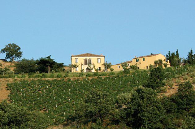 Calabria producers