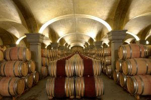 tignanello wines, cellars