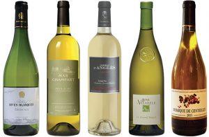 Languedoc white wines