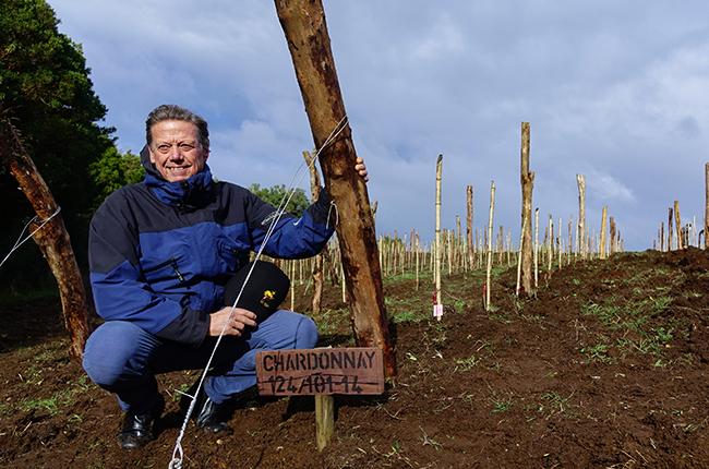 Montes Chiloé vineyard